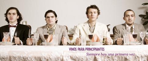 vinos para principiantes