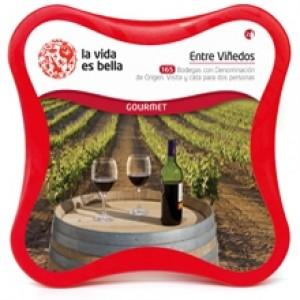 Visita con cata de vinos